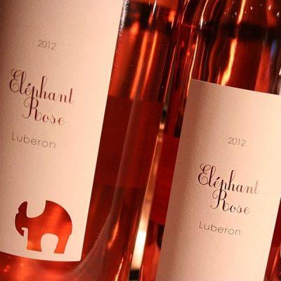 ELEPHANT ROSE 2015