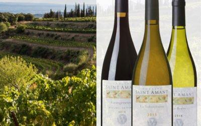Découvrez les charmes du Domaine Saint-Amant au Vin devant soi