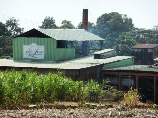 distillerie-de-rhum-longueteau (1)